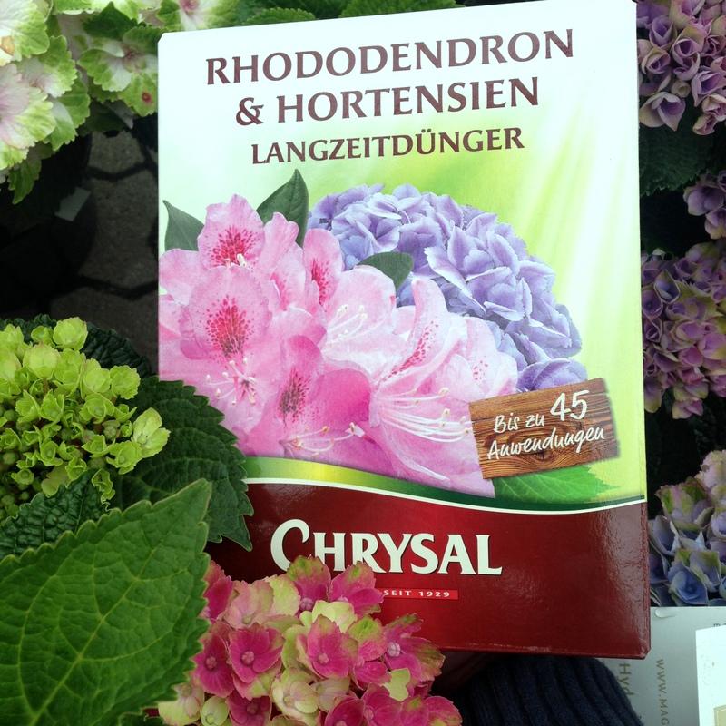 Dünger Langzeitdünger Rhododeendron Hortensien