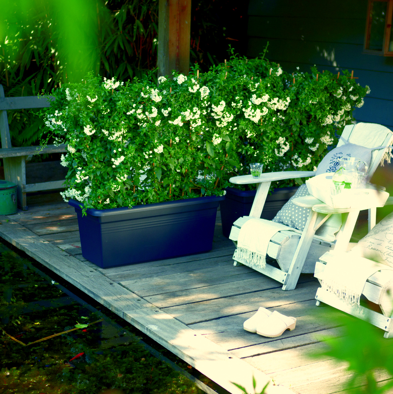 elho green basics garden