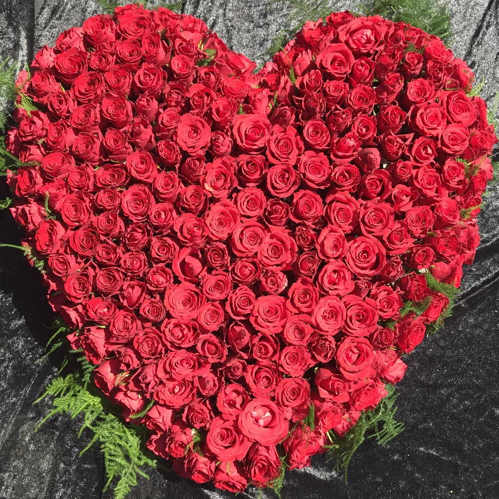 Blumenparadies Hasselt Trauerherz rot